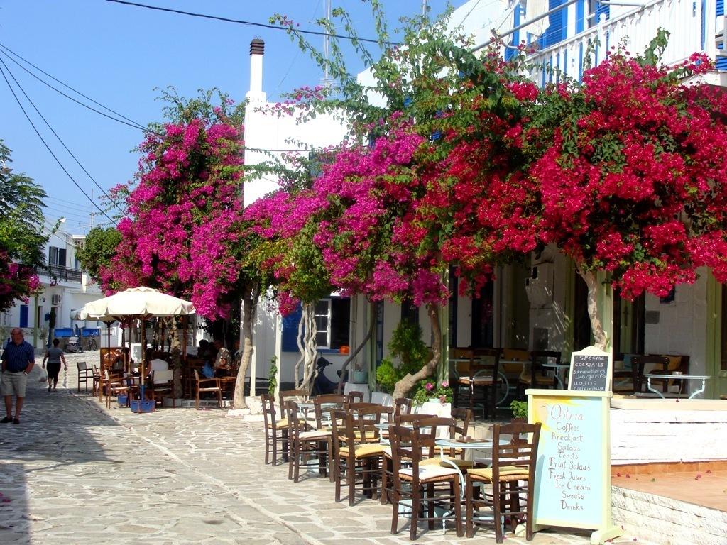 Σταϊκούρας: Πρόσθετο πακέτο στήριξης για εστίαση και τουρισμό.